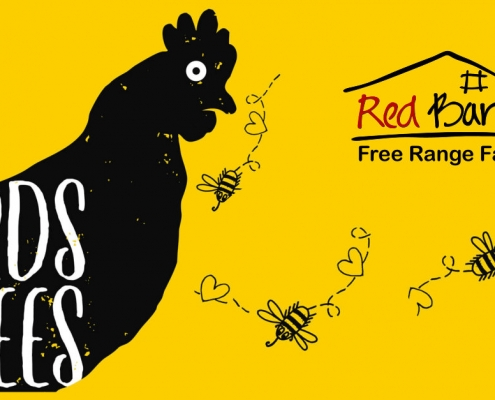 Raw honey Red Barn